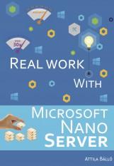 Real work with Microsoft Nano Server - termek_cimlapfoto.jpg